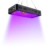TS 200 LED Lampe